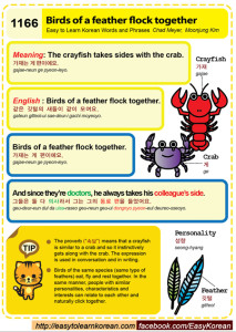 1166-Birds of a feather flock together
