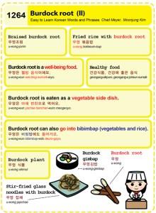1264-Burdock root 2