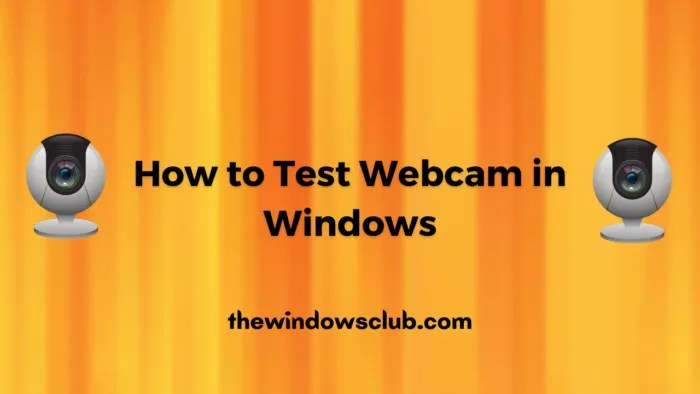 How to check if webcam is working