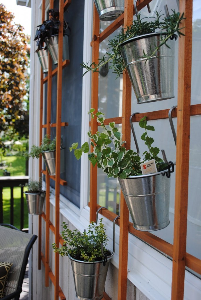 DIY Vertical Trellis Garden Ideas Under 50