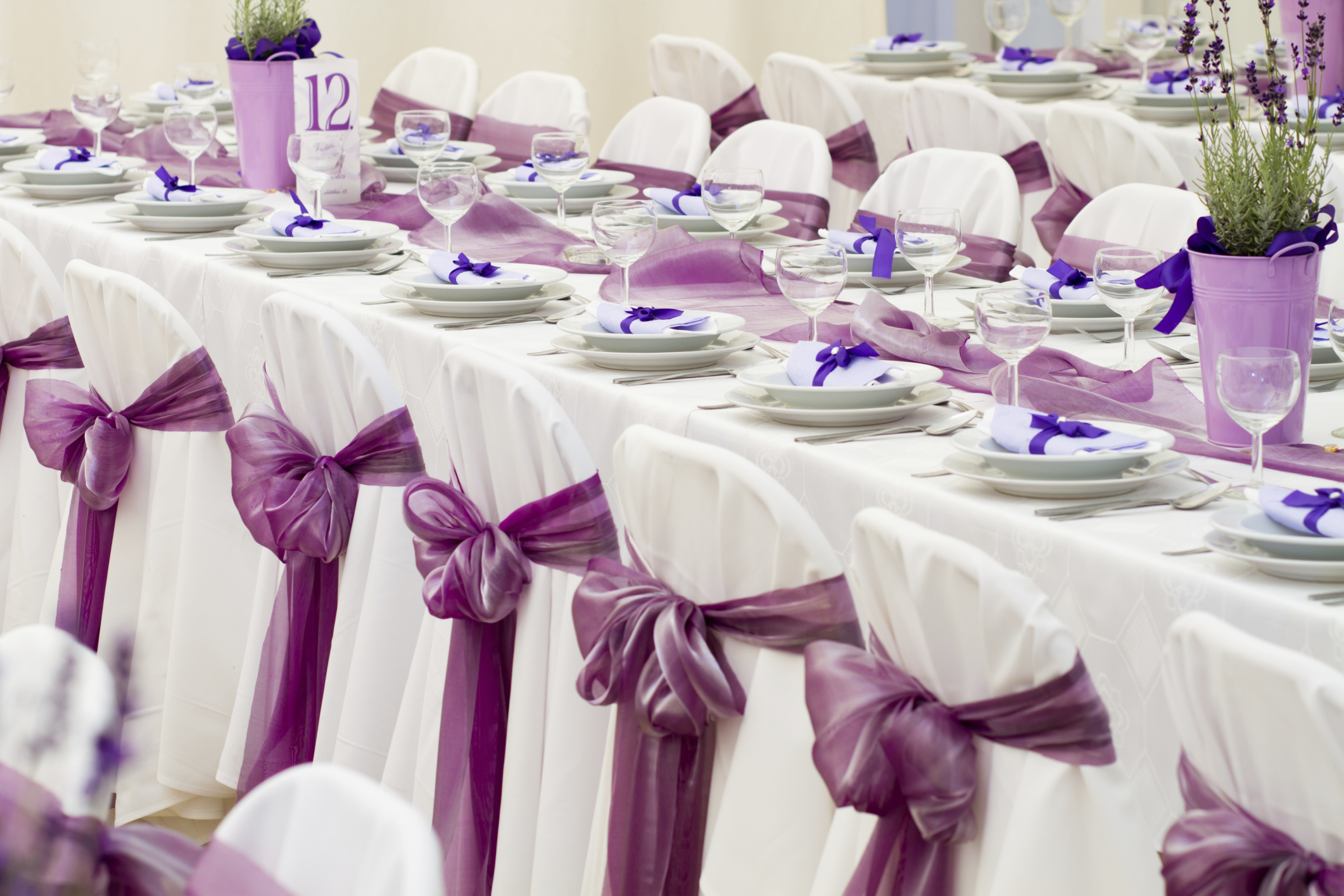 chair covers for sale melbourne pink gold wedding articles easy weddings show in decorations