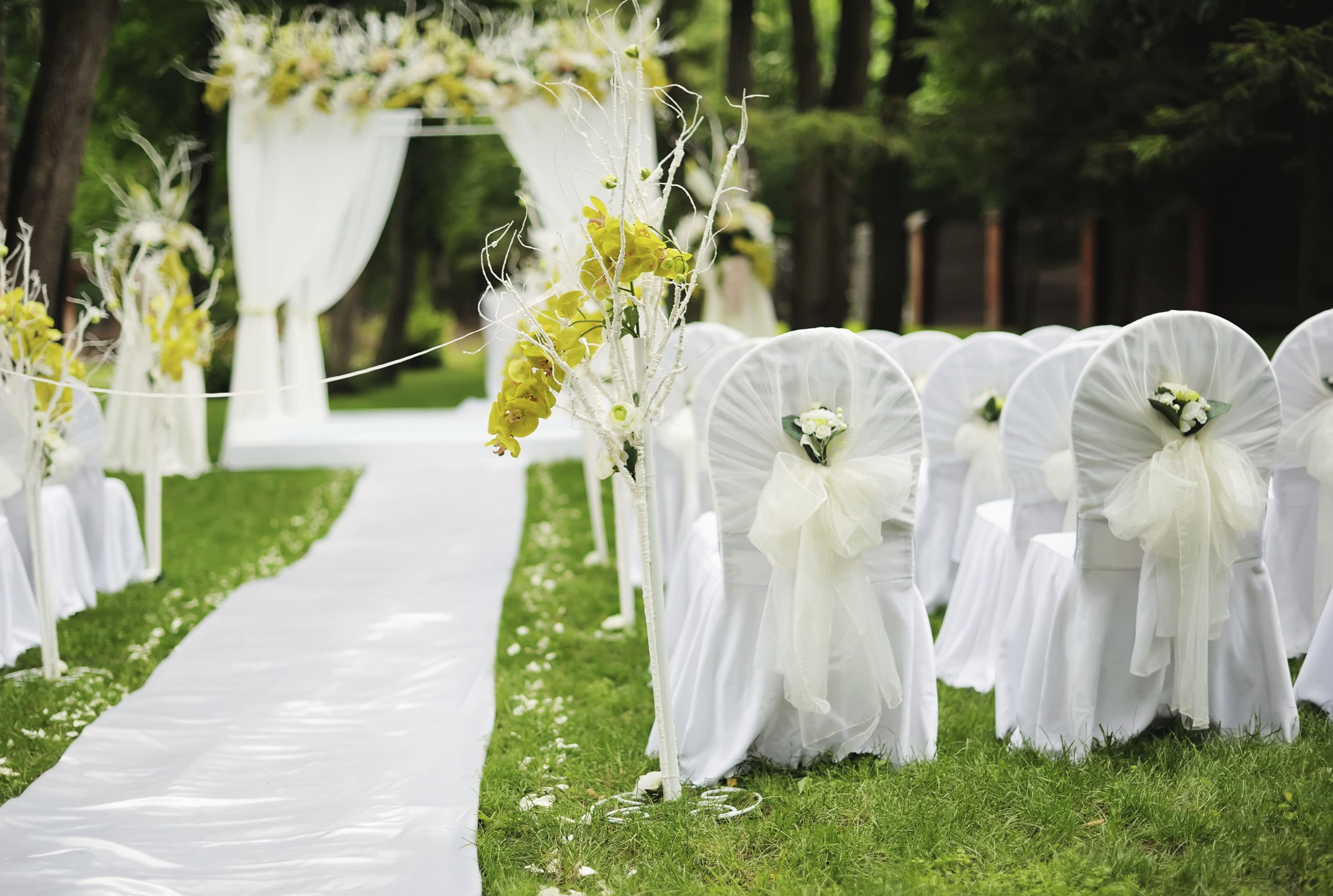 Why You Need Wedding Chair Covers