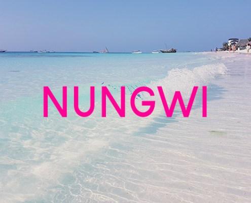 spiaggia nungwi beach img
