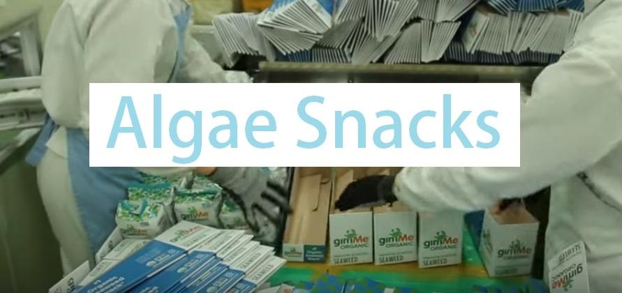 algae snacks