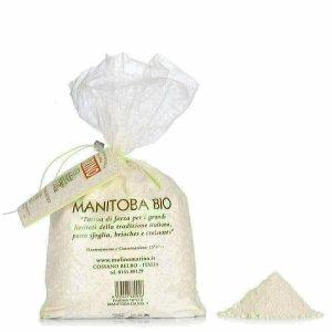 Farine Manitoba Bio 1kg