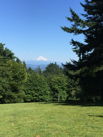Vue sur Mount Hood