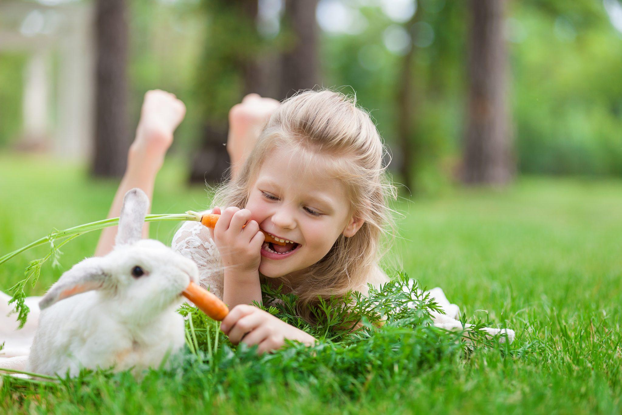 子供がウサギにニンジンを食べさせている