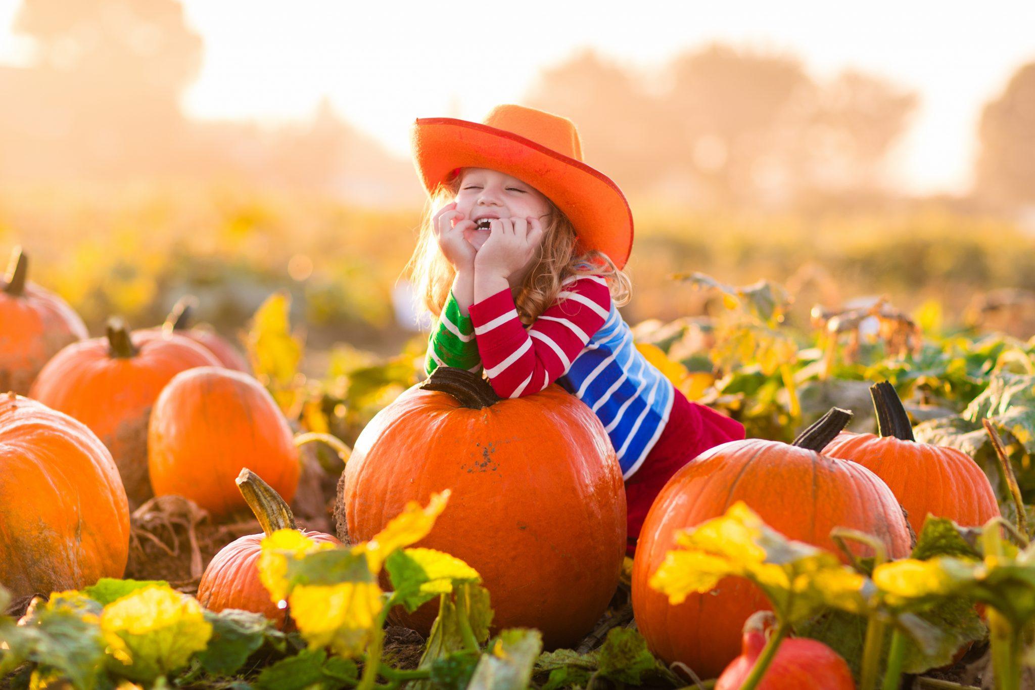 子どもがかぼちゃに乗っている