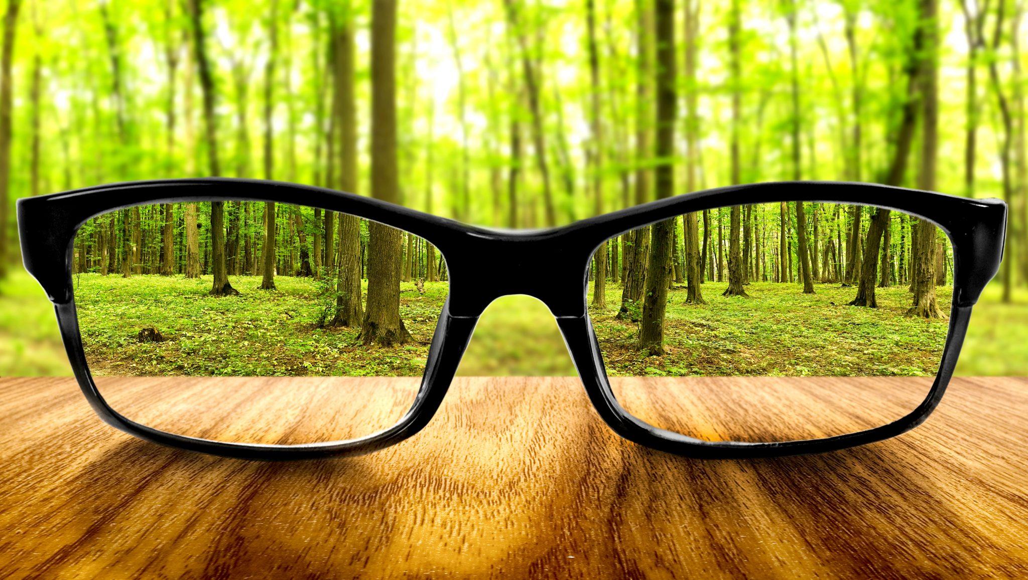 視力の改善