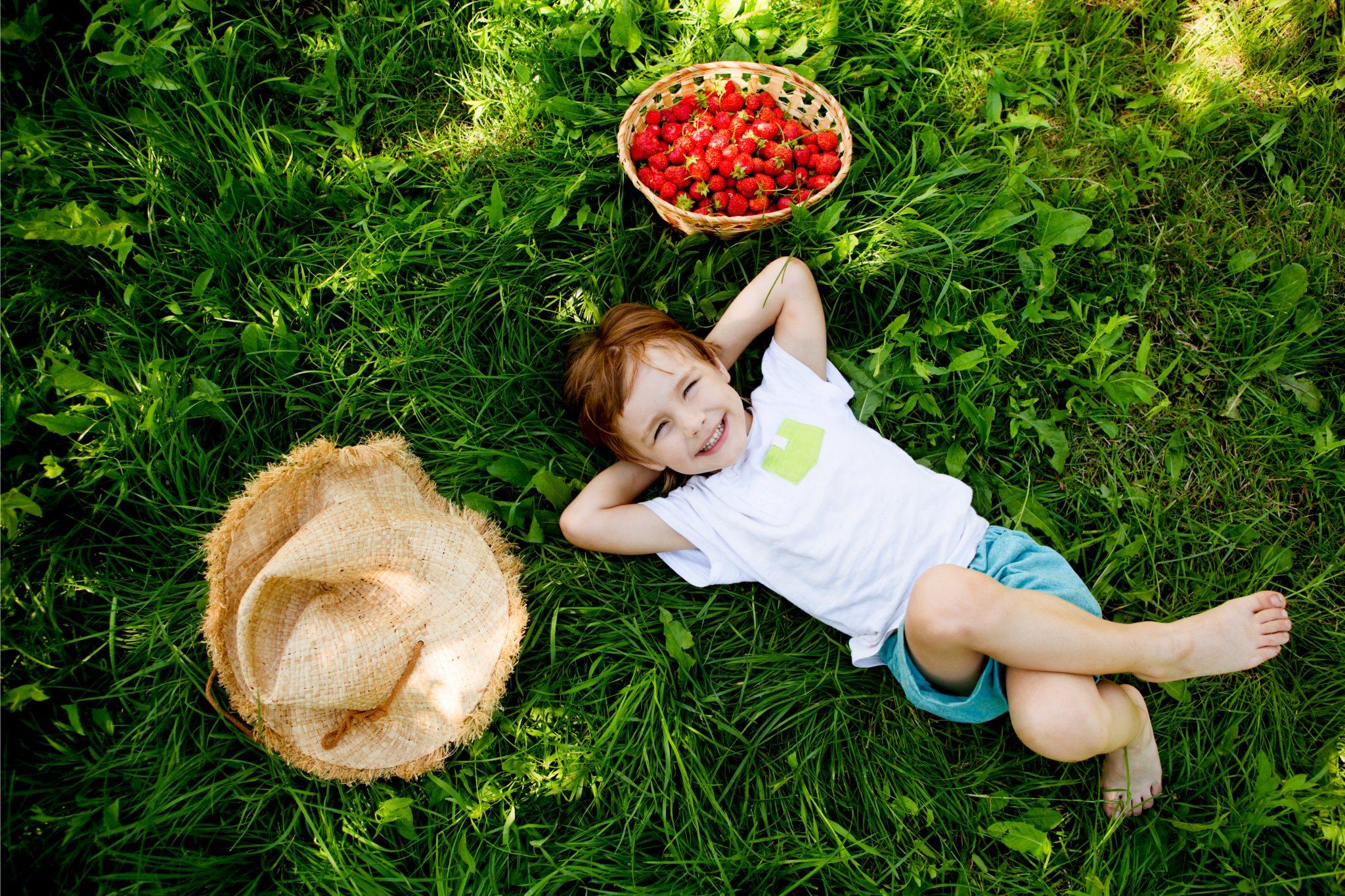 いちごを沢山食べて外で横になっている少年