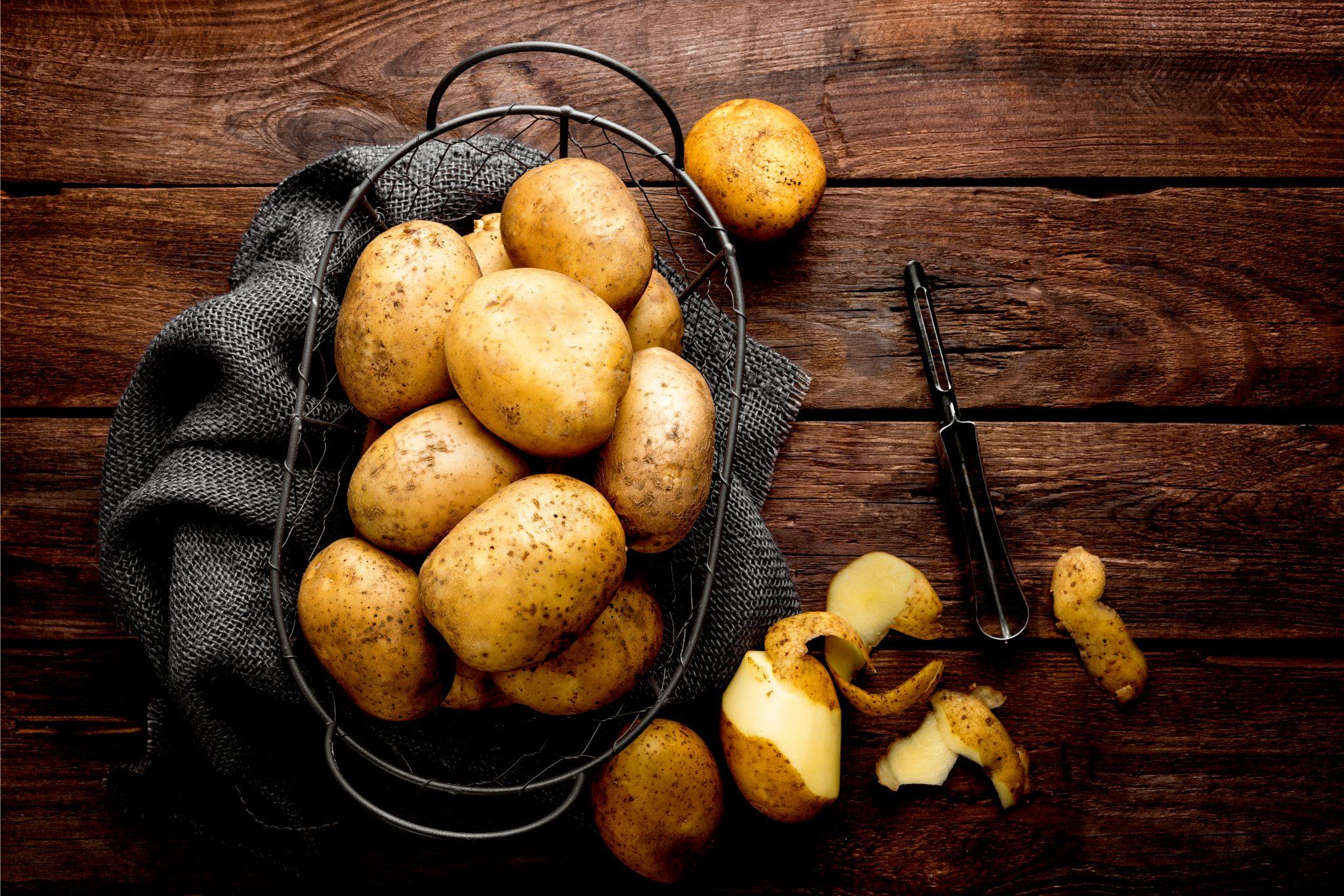 取れたての新鮮なジャガイモ