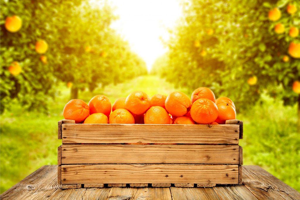 木箱いっぱいに入ったオレンジ