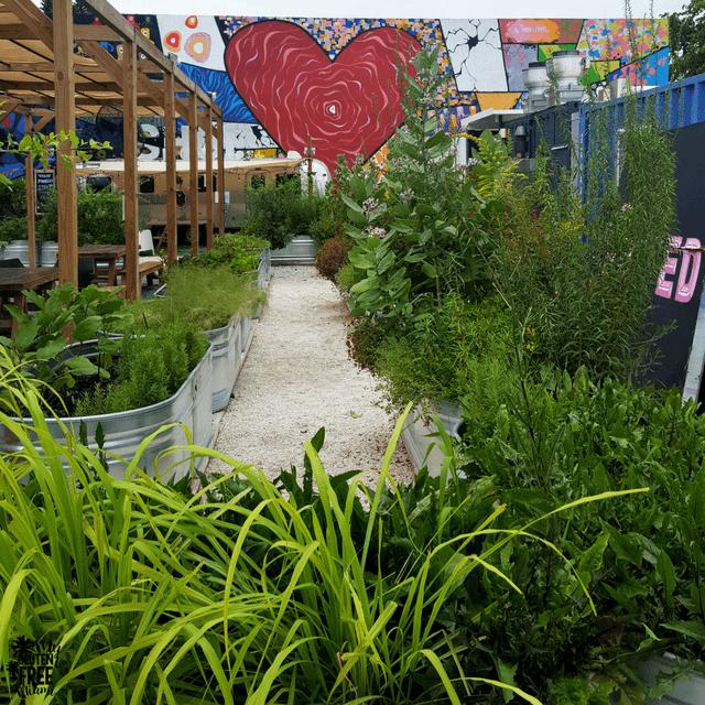 Dellas Test Kitchen Garden