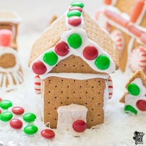 easy gluten free gingerbread house