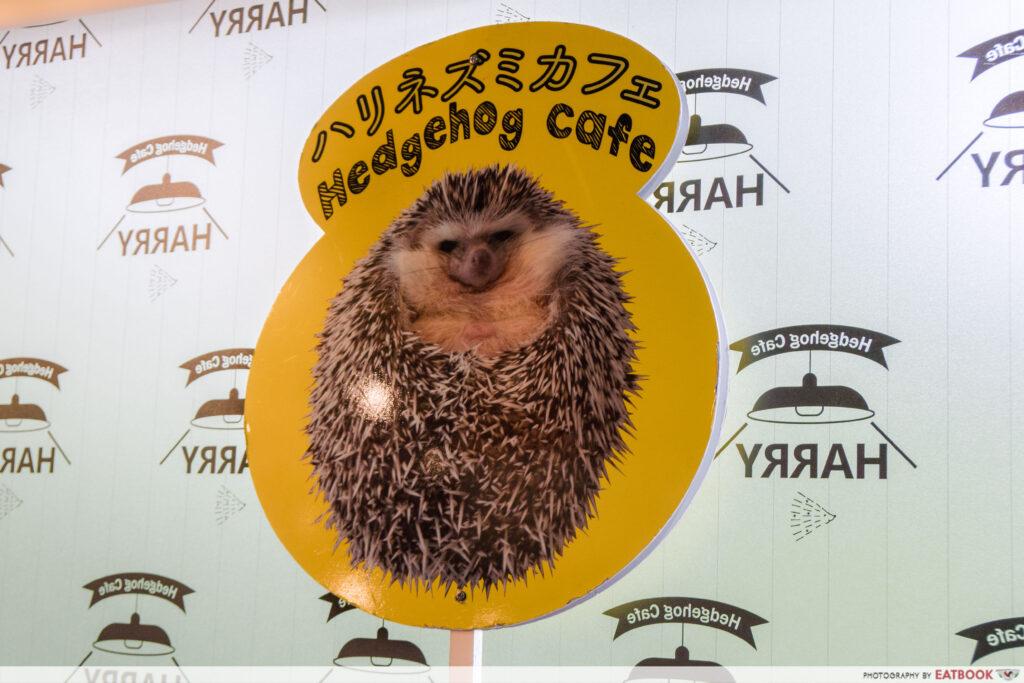 HEDGEHOG CAFE (JAPAN)-sign