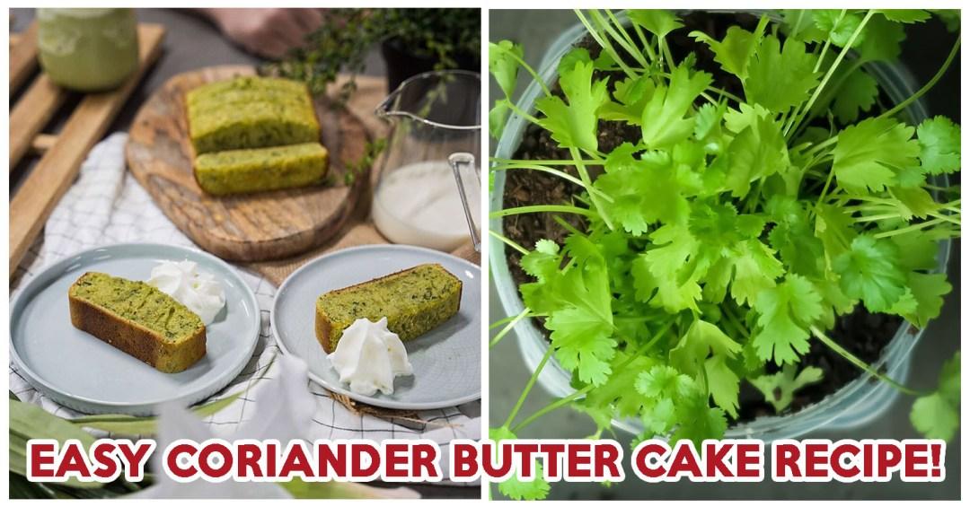Coriander Butter Cake - Feature Image
