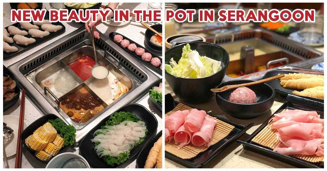 Beauty In The Pot Feature Image