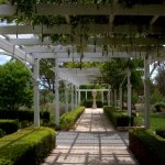 Discover the best gardens on the Granite Belt