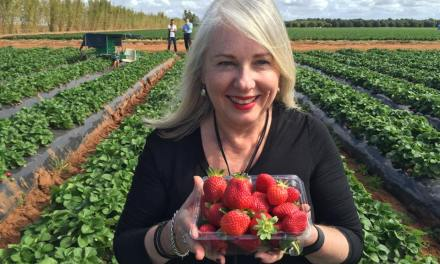 About Kerry Heaney – Brisbane-based food and travel writer