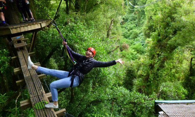 Ziplining in New Zealand with a Rotorua canopy tour