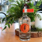 Find your Fortune at the new Noosa Heads Distillery