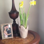 Add cheer to your home with potted plants