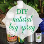 Summer is here + DIY natural bug spray recipe