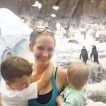 Orlando Vacation Recap Part 1: Sea World and Buena Vista Suites Review
