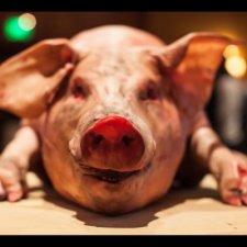High on the Hog: A Cochon 555 Retrospective
