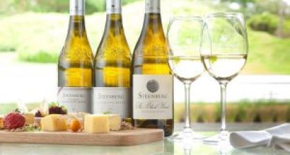 Steenberg Wines - June special offer discounts at Cellar Door