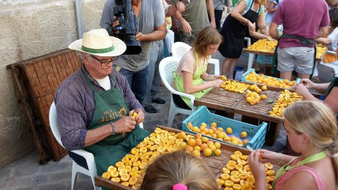Removing stones from apricots.