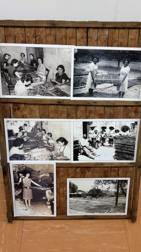 We love old photos of Mallorca and these were part of the Fira's exhibition.