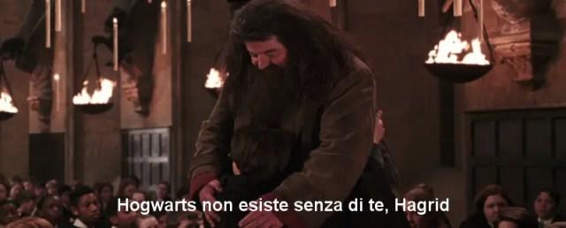 Hagrid, abbraccio con harry