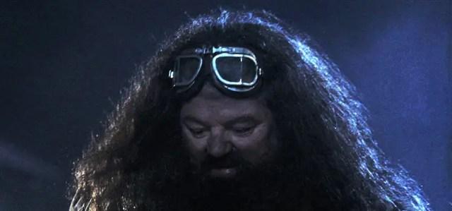 Hagrid nella Pietra Filosofale