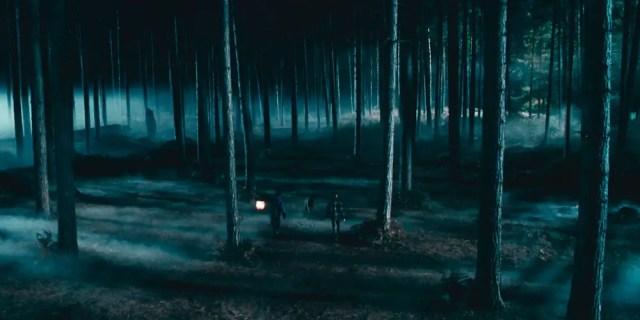 Harry e Ron nella Foresta Proibita: l'accesso è proibito dalle regole di Hogwarts