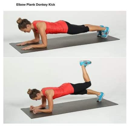 elbow-plank-donkey