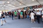 WSFC 2015 - Crowd