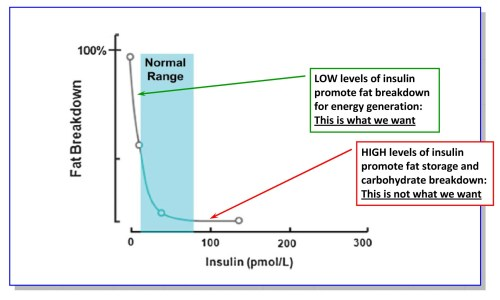 small resolution of insulin resistance