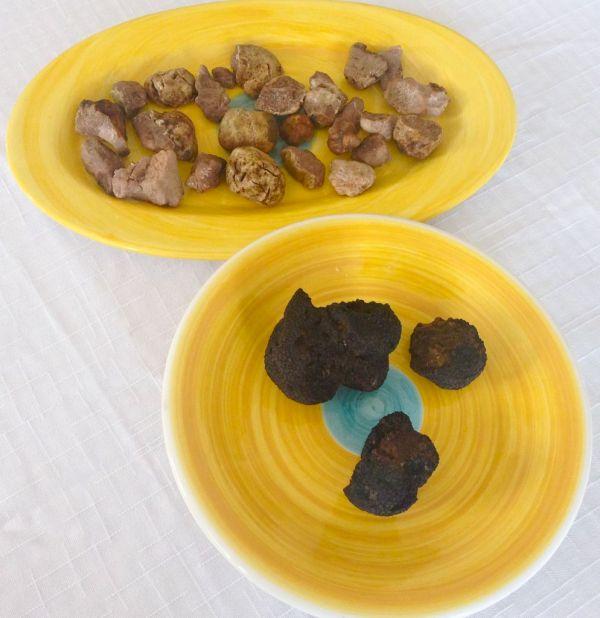 Plenty of truffles...both black and white
