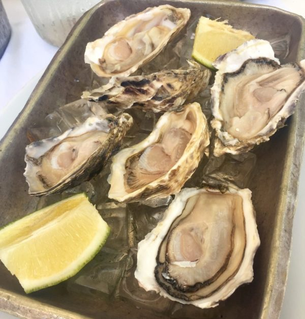 Today's La Perla oysters came from Namibia. Yum.