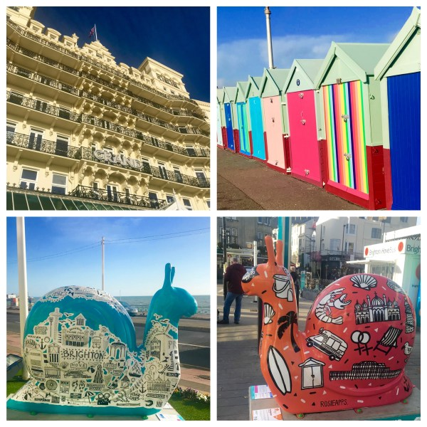 Brighton: sights and snails