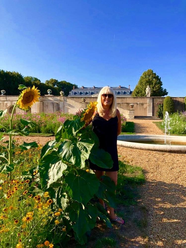 Grande Luce: sunflower