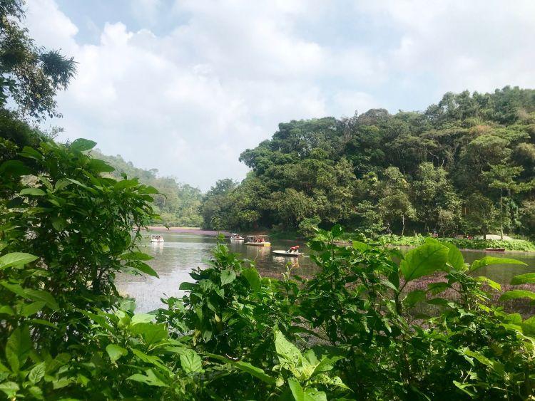 Kerala: Pookot
