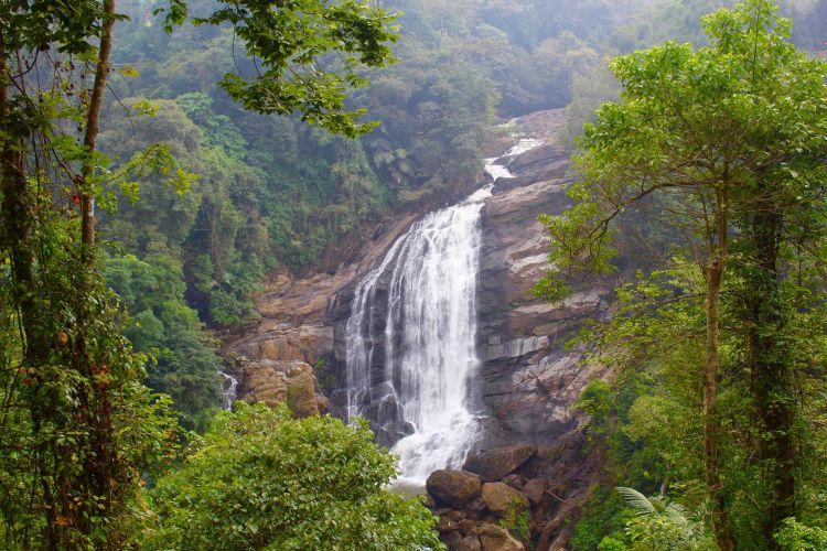 Kerala: Munnar
