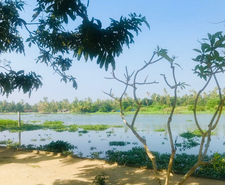 Kerala: Philipcuttys Farm