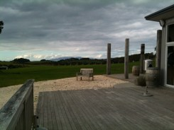 At the Batch Vineyard