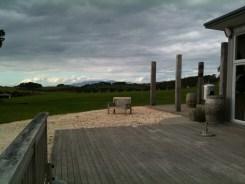 At the Batch Vineyard