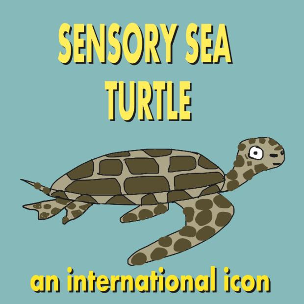 sensory sea turtle eating
