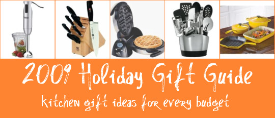 2009 Christmas Gift Guide for Holiday Shopping Gift Ideas
