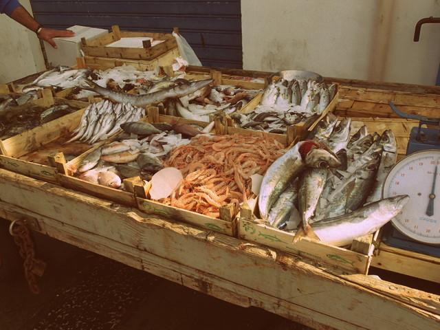 Fresh fish at the Trapani fish market